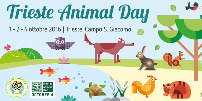 animal-day