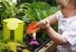 Casa 2.0 – Giardino e terrazzo i consigli della settimana con Marinaz agraria e giardinaggio