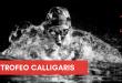 Ritorna il grande nuoto a Trieste con il Trofeo Calligaris